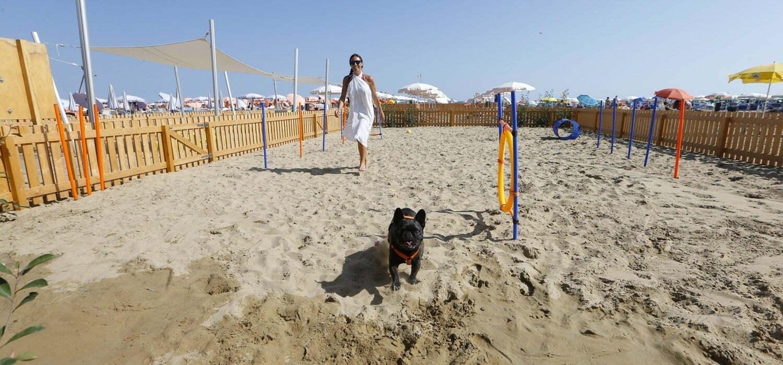 spiaggia per cani in Friuli Venezia Giulia