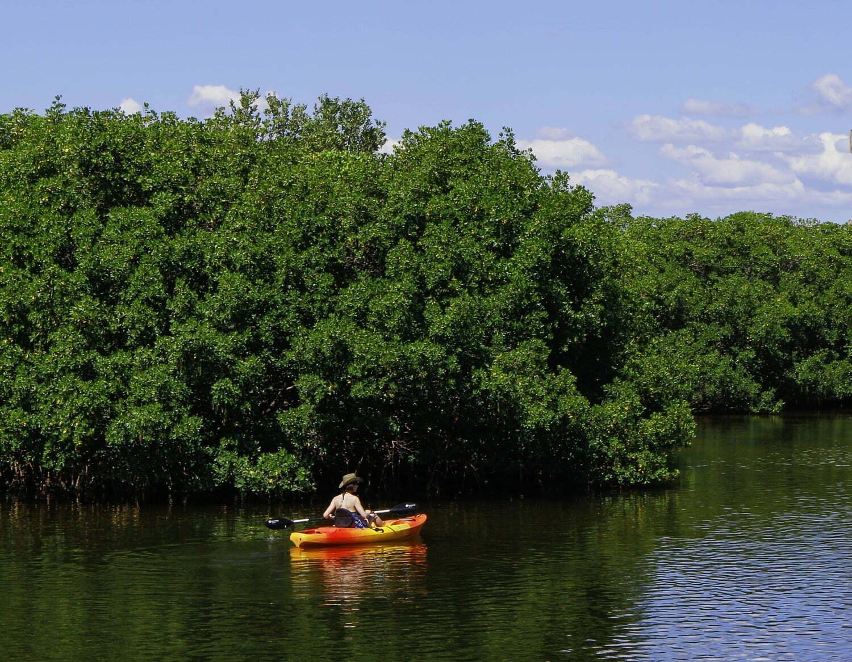 vacanze green in repubblica dominicana