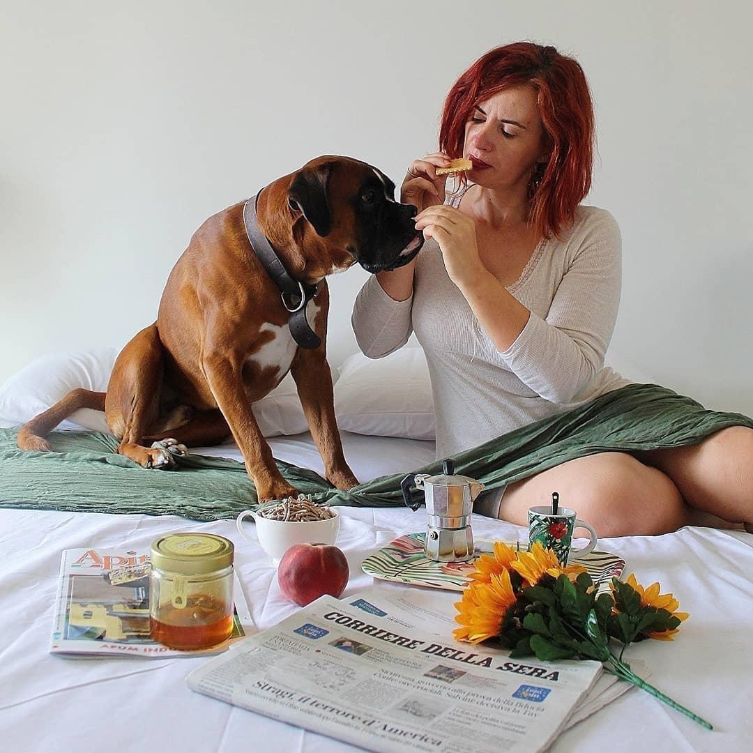 responsabilità del pet sitter