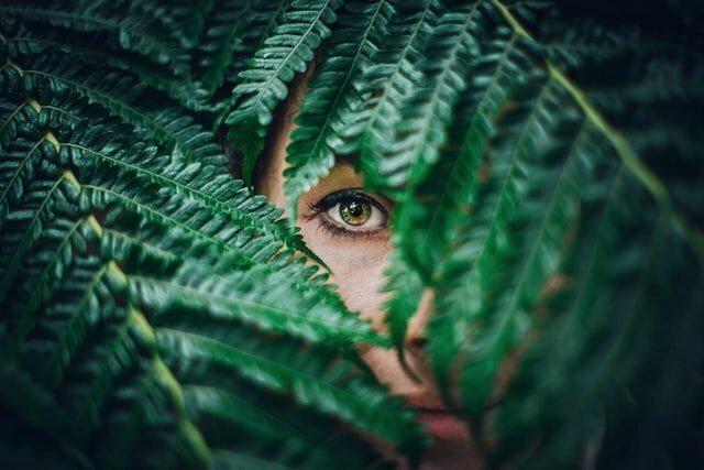 Come proteggere gli occhi con sostanze naturali