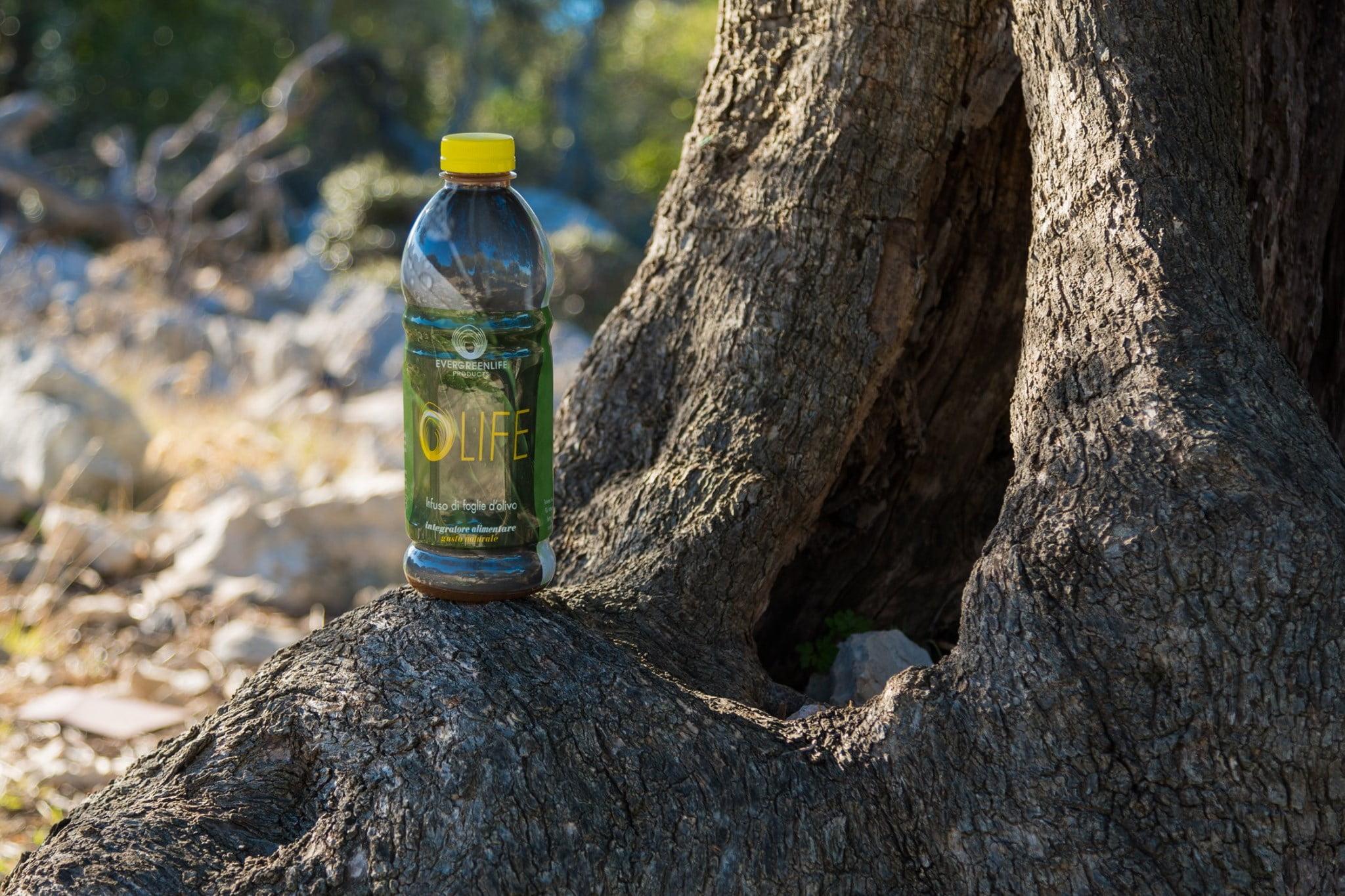 Perché non si deve bere Olife di Evergreen